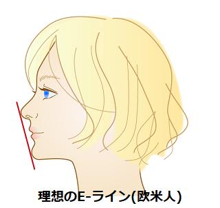 理想のE-ライン(欧米人)